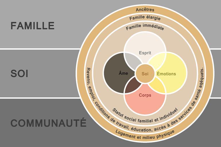 Ce modèle illustre le concept de l'interconnectivité représenté par Mino-Bimaadziwin. Le moi nécessite une existence équilibrée à l'interne autant qu'à l'externe. Le modèle situe le moi au centre avec la famille et la communauté occupant les domaines externes où la famille comprend la famille immédiate, la famille étendue et les ancêtres. La communauté tient compte des déterminants sociaux de la santé. Enfin, le moi interne regroupe le spirituel, le cognitif, l'émotionnel et le physique.